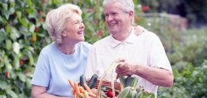 как улучшить память питанием